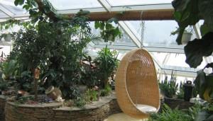 Декоративное оформление зимнего сада, высадка растений