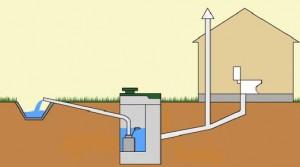 Локальная биоканализация