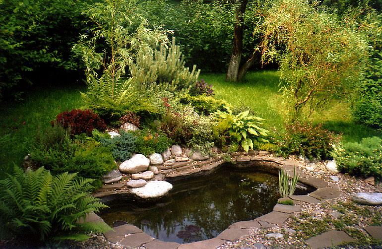 Дизайн водоем садовых