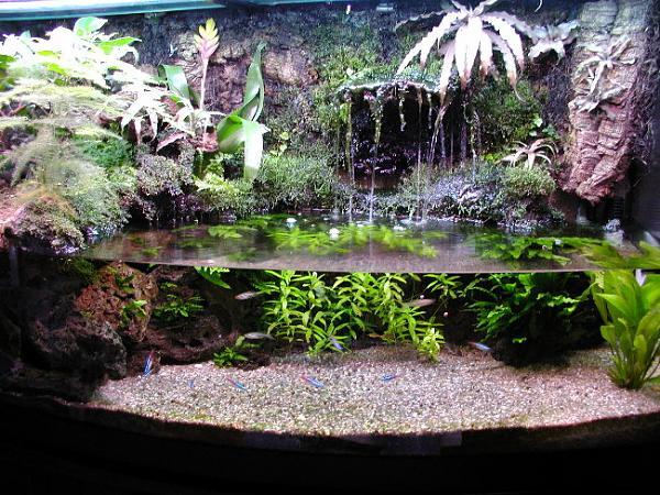 Водопад в аквариуме своими руками фото