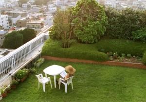 сад на крыше мегаполиса