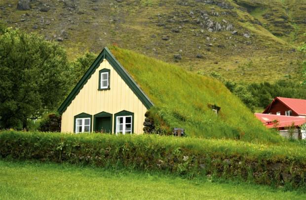 экстенсивное озеленение