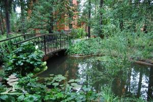 естественный водоем на участке