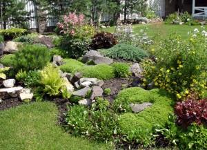 Обустраиваем рокарий: стили, растения и место расположения