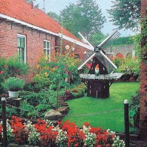 Голландский сад