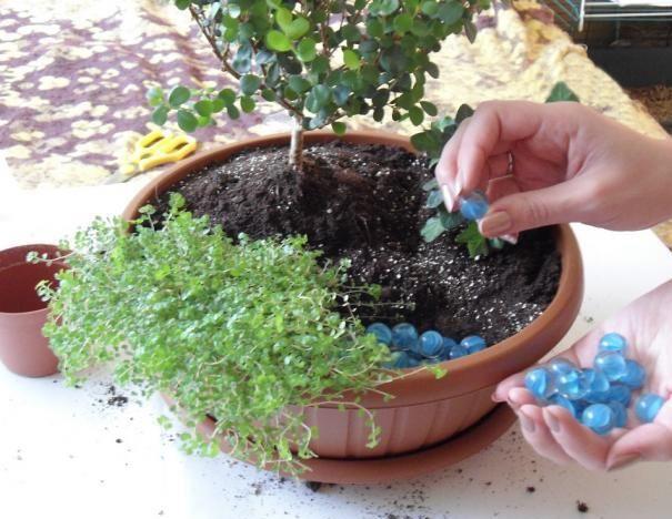 Учимся обустраивать мини-сад