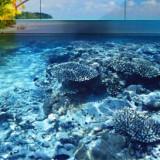 Наливные полы