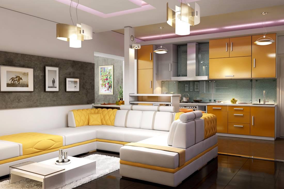 фото кухня-гостиная совмещенные