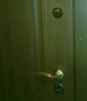 Стальная дверь входная