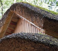 Камышовые и соломенные крышы