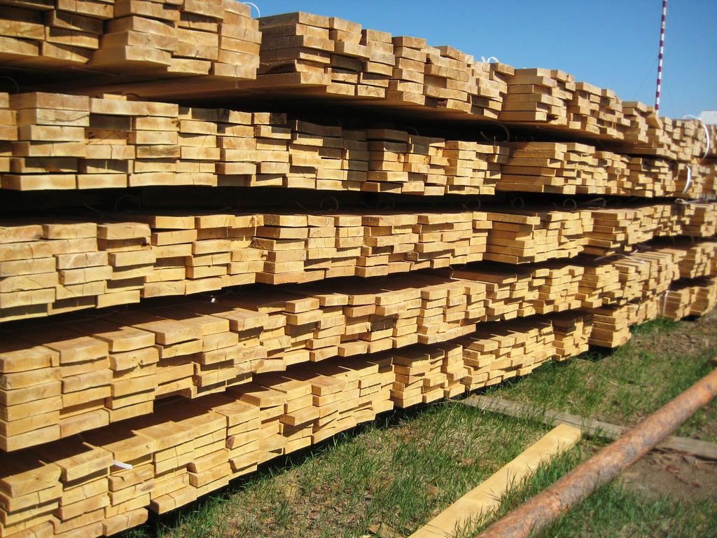 Гниение строительной древесины – как избежать? Предупреждение и восстановление