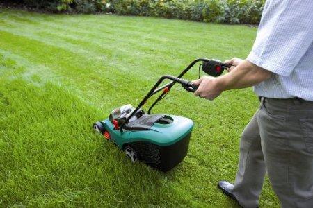 Чем и как правильно подстричь газон