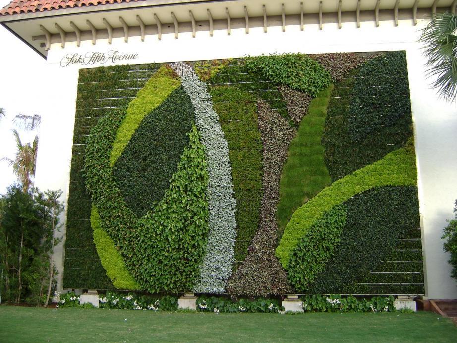 Вертикальные сады: история, растения, конструкция