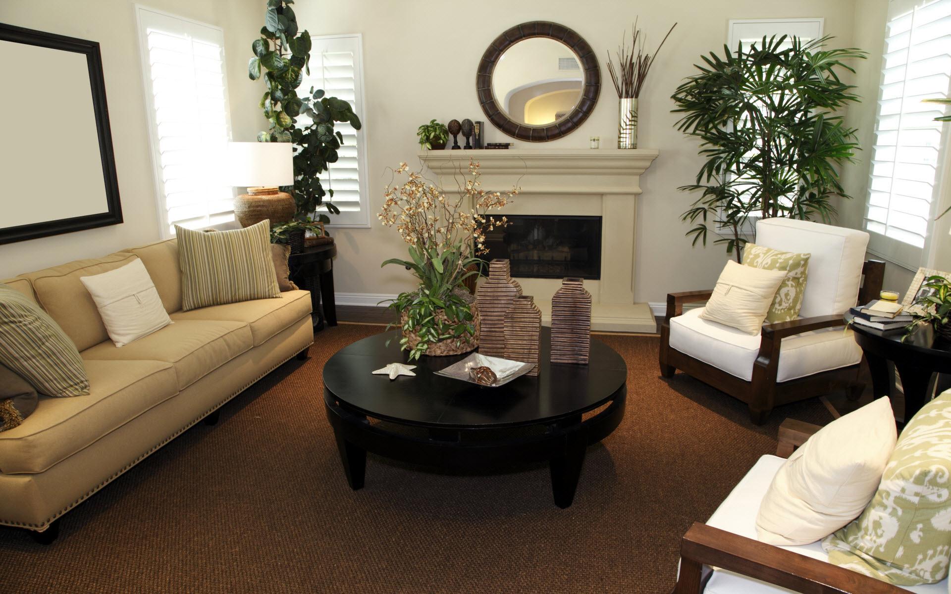 Декор квартиры с помощью растений