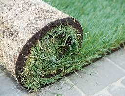 Рулонный газон: достоинства и недостатки