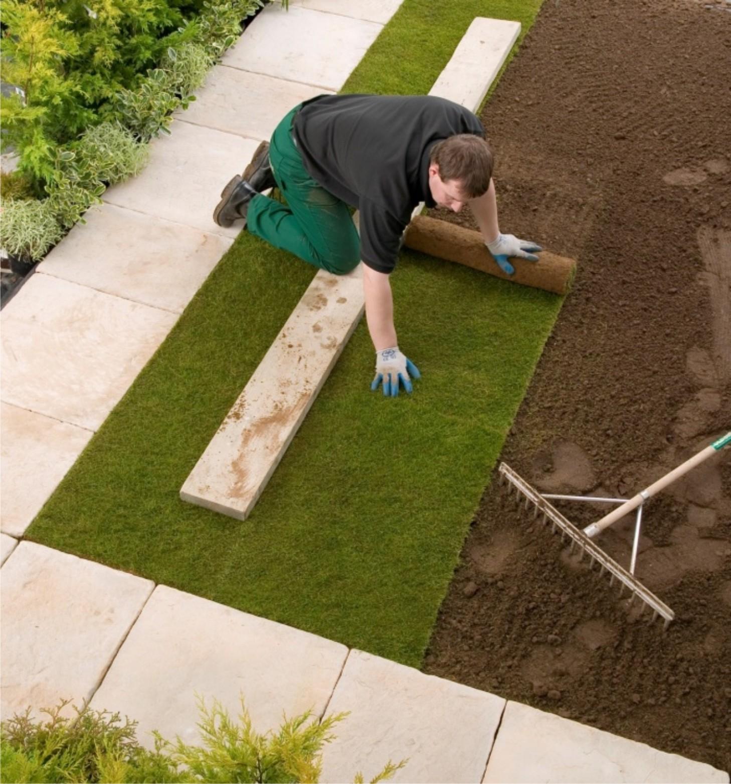 Как выбрать и уложить рулонный газон