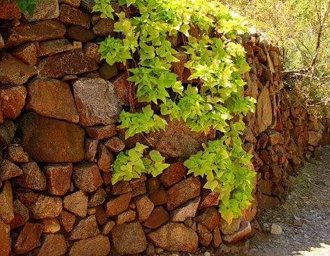 Забор из натурального камня. Способы кладки