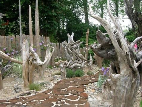 Рутарий – интересное украшение сада