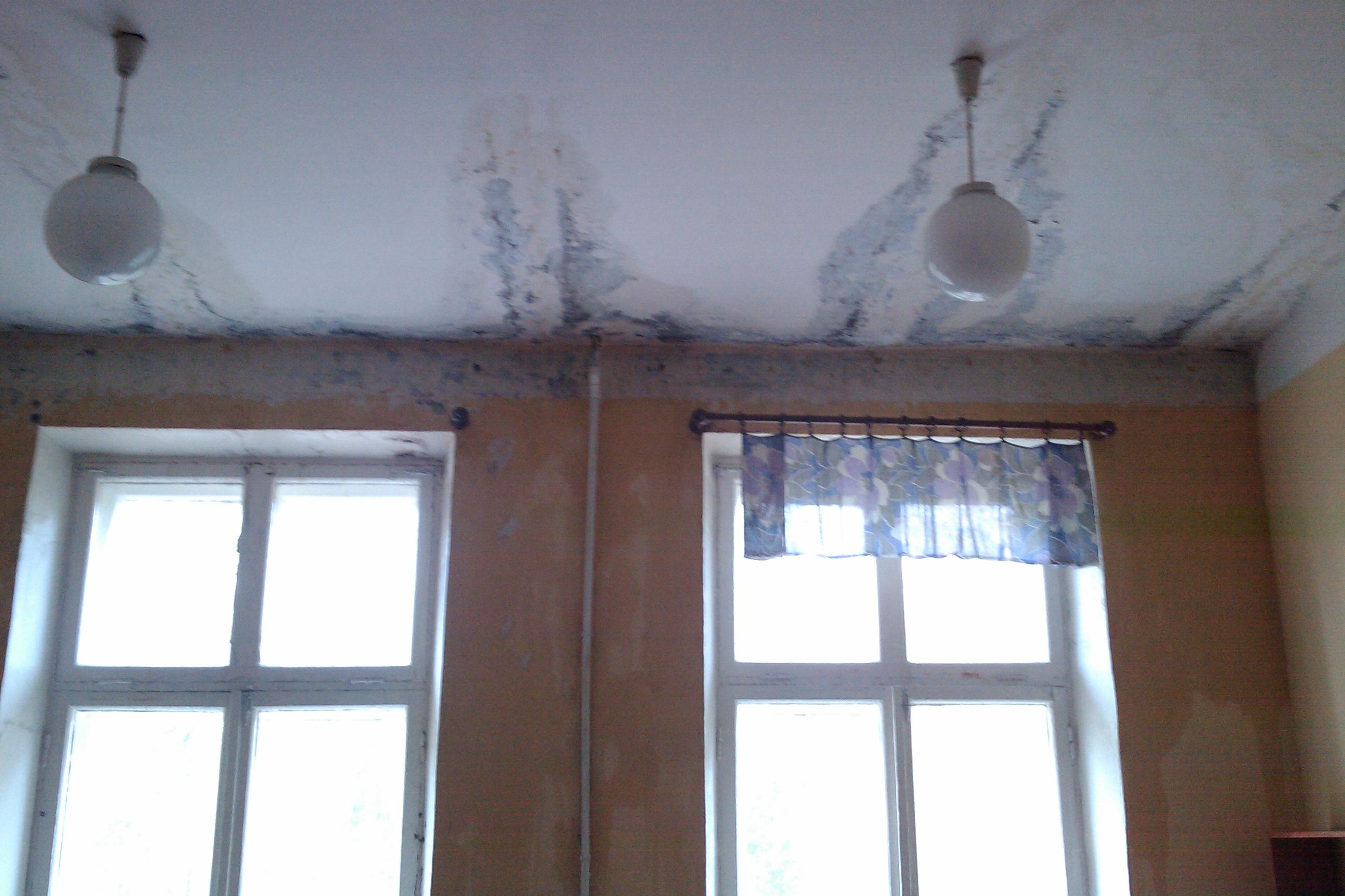 Причины и как избавиться от повышенной влажности в квартире