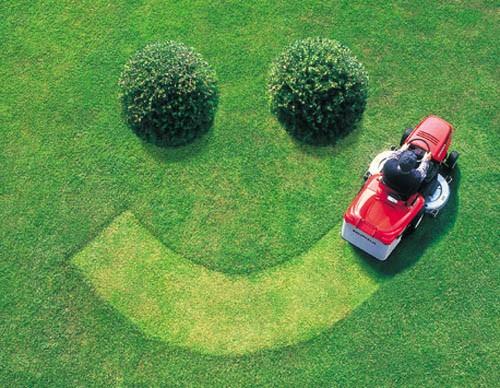 Уход за газоном в осенний период, или Как подготовить газон к зиме?