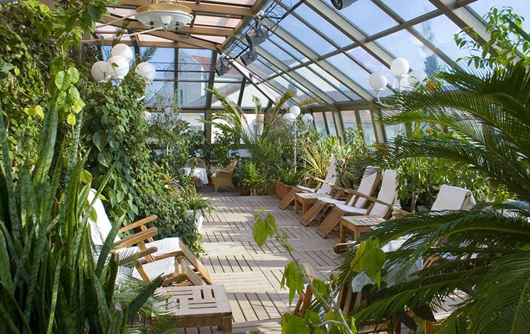 5 советов по обустройству зимнего сада